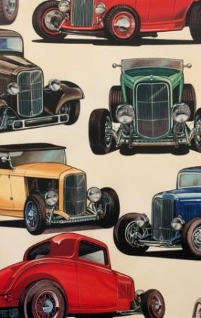 biler/kjøretøy